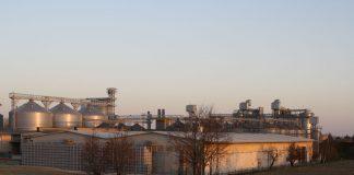edilizia industriale rovigo